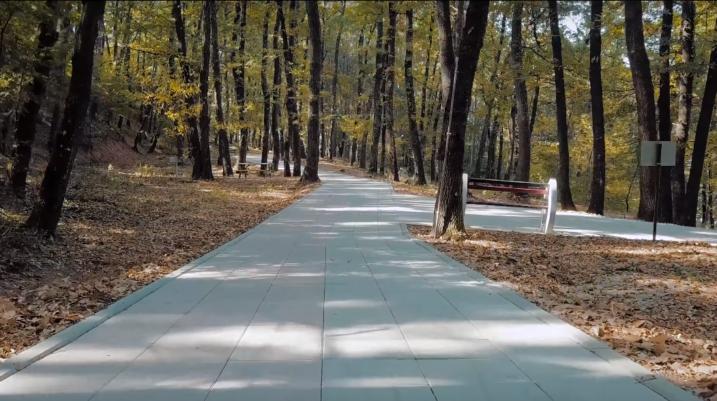 """[VIDEO] """"Shtigjet e Ecjes"""" për të gjithë ata që dëshirojnë të mbajnë shëndetin mirë dhe të kalojnë kohën e lirë duke ecur"""