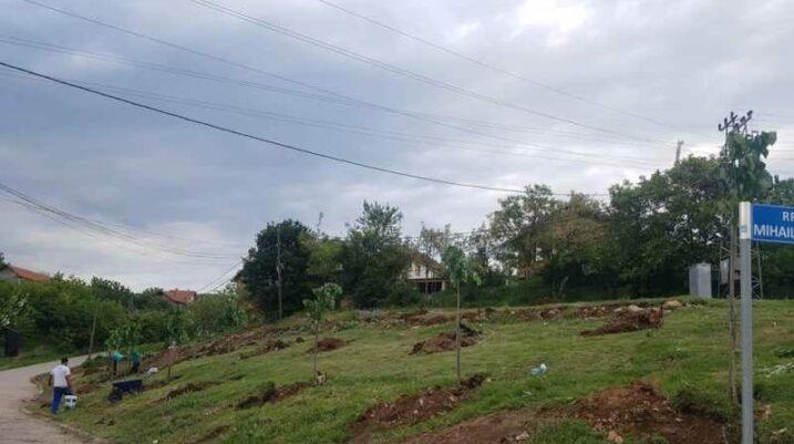 Samadraxhë: Mbjellën 41 pemë në përkujtim të të vrarëve në luftë
