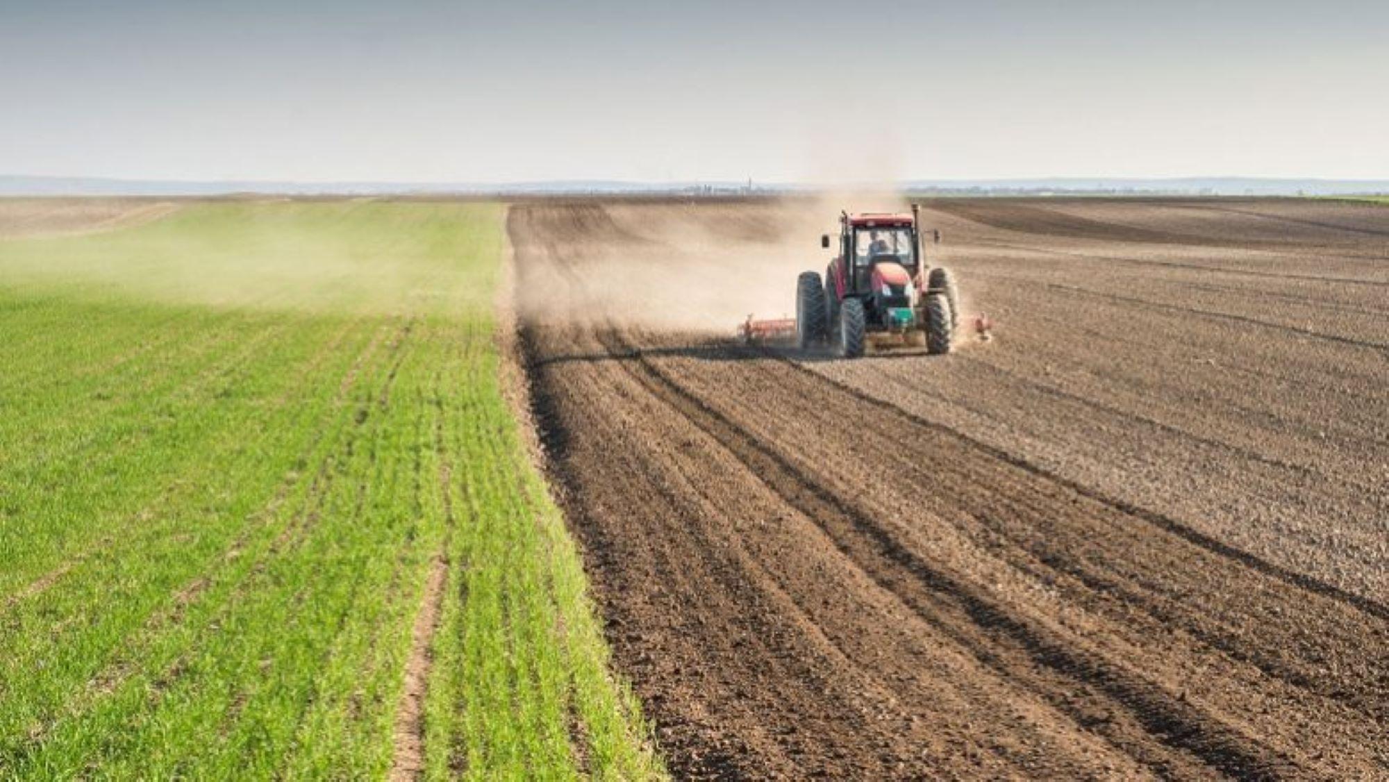 Qeveria ndan mbi 1 milion euro për bujqit të cilët u dëmtuan në Suharekë