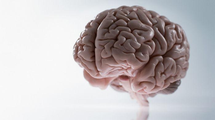 Arsyet pse ndodh mjegullimi i trurit dhe si të mbroheni