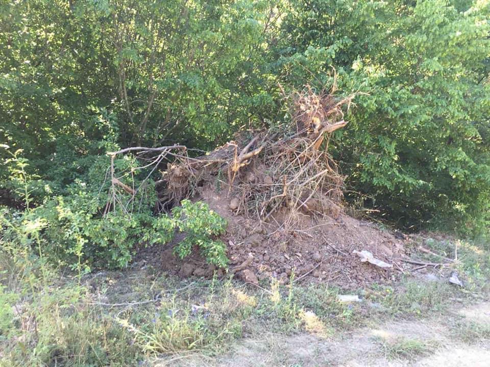 Komuna shtrëngon dhëmbët, 200€ gjobë për hedhje të mbeturinave në Gjinoc