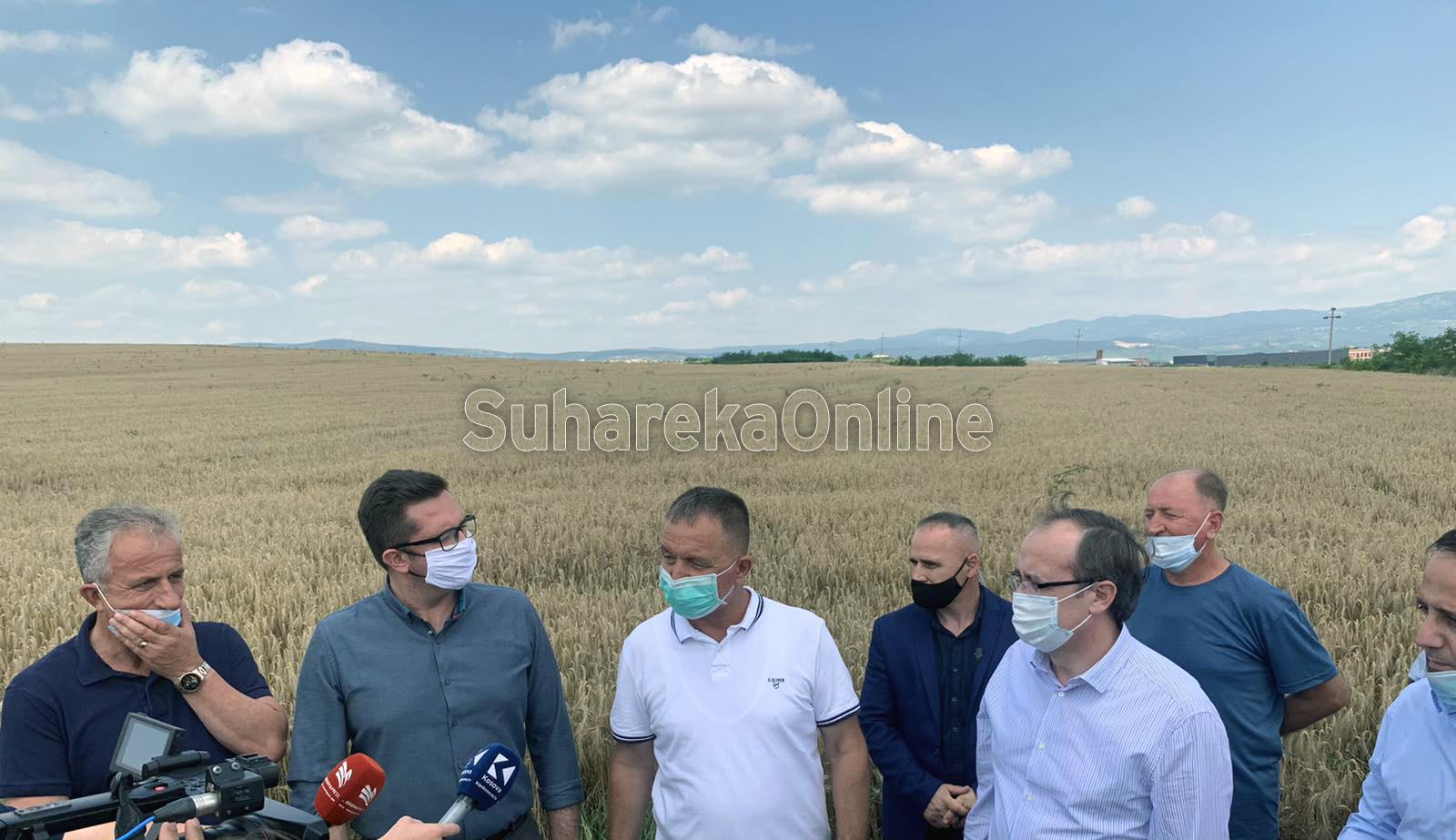 Hoti merr pjesë në fillimin e fushatës së korrje shirjeve në Suharekë