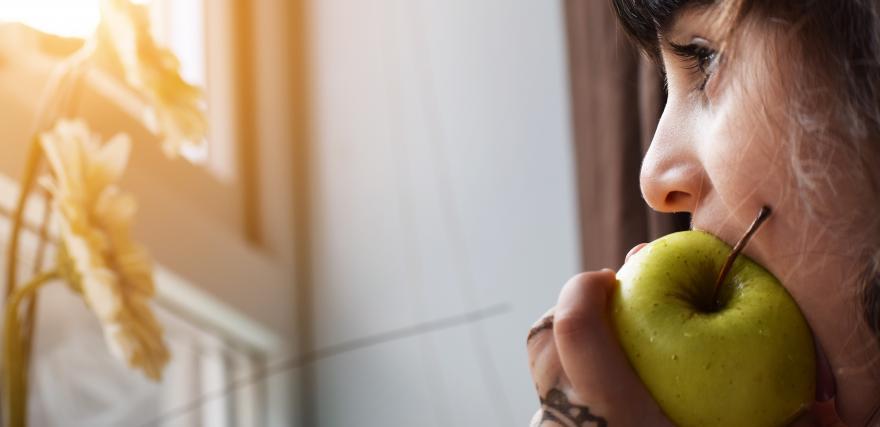 Një mollë në mëngjes, 5 përfitime shëndetësore në trupin tuaj