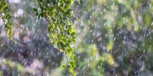 Edhe të dielën mot i vranët dhe me reshje shiu